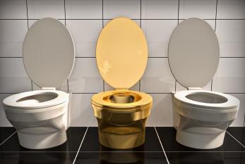 Nicht in allen Teilen der Welt gibt es saubere Toiletten wie die hier gezeigten