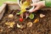 Lerne-wie-Kompostieren-geht-Tag 2019