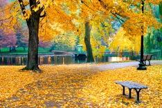 Meteorologischer Herbstbeginn 2020