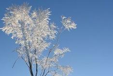 Meteorologischer Winterbeginn 2020