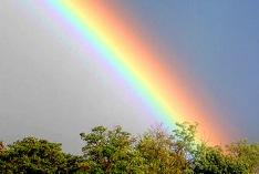 Finde-einen-Regenbogen-Tag 2020